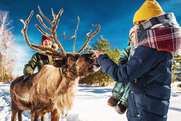 Зимний туризм Тюменской области